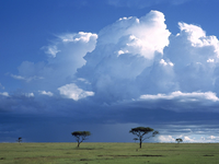 Image_0014.kenya.masai_mara.storm_over_the_savannah
